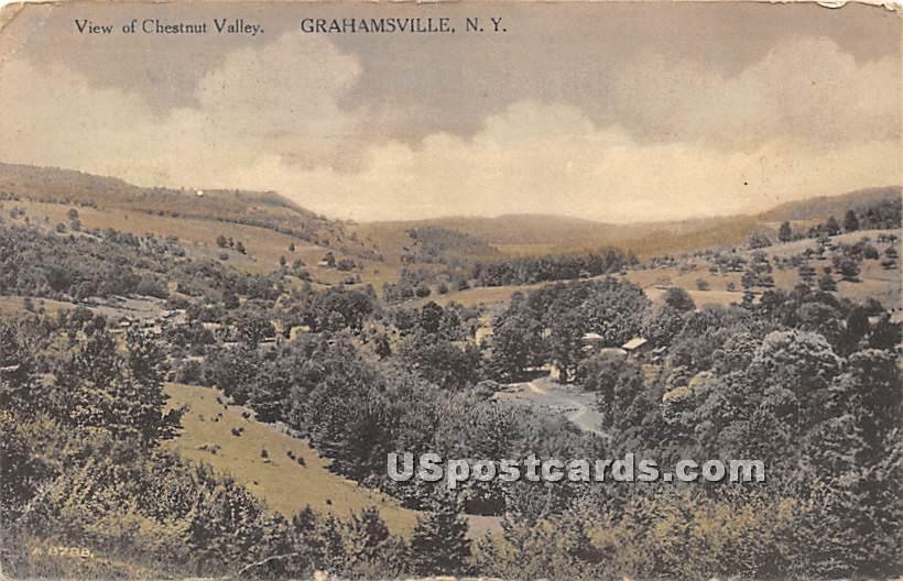 View of Chestnut Valley - Grahamsville, New York NY Postcard