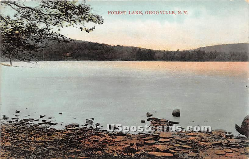 Forest Lake - Grooville, New York NY Postcard