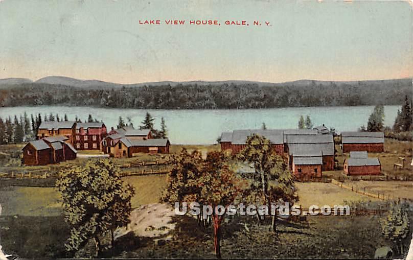 Lake View House - Gale, New York NY Postcard