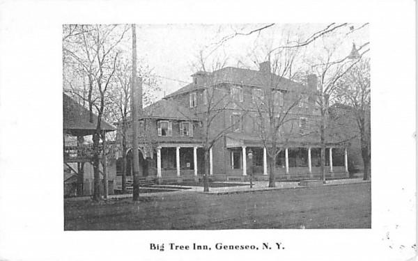 Big Tree Inn Geneseo, New York Postcard