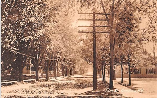 Elm Street Geneseo, New York Postcard