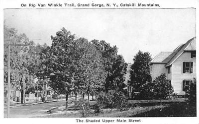 Shadded Upper Main Street Grand Gorge, New York Postcard