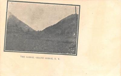 The Gorge Grand Gorge, New York Postcard