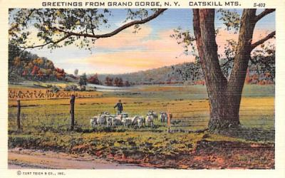 Catskill Mountains Grand Gorge, New York Postcard