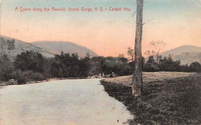 Along the Bearkill Grand Gorge, New York Postcard