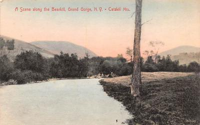 Along the Bearkill Grand Gorge, New York Postcard