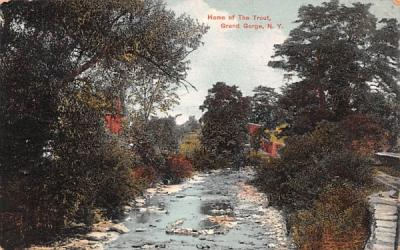 Home of the Trout Grand Gorge, New York Postcard