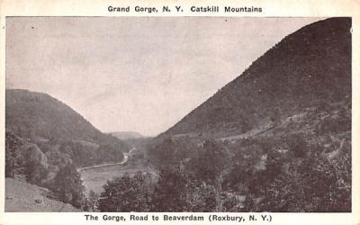 The Gorge, Road to Beaveerdam Grand Gorge, New York Postcard