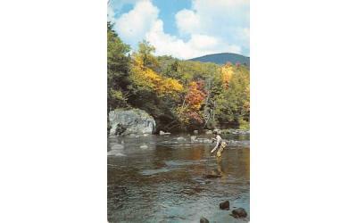 It's a Strike Grand Gorge, New York Postcard