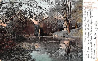 Murror Mill Pond Grand Gorge, New York Postcard