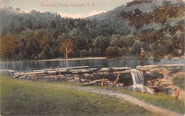 Busfield's Pond Hancock, New York Postcard