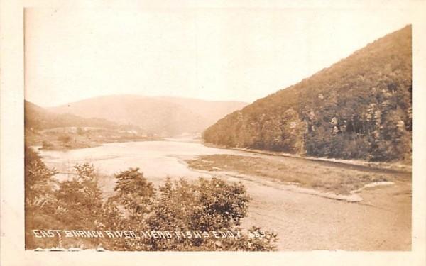 East Branch River Hancock, New York Postcard