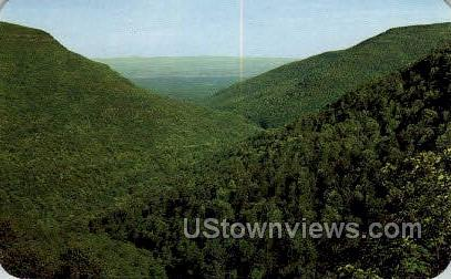 Catskill Mountains - Haines Falls, New York NY Postcard
