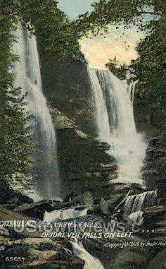 Catskill Mountains - Haines Falls, New York NY Postcard