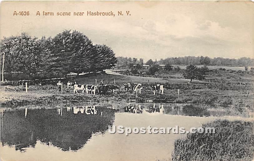 Farm Scene - Hasbrouck, New York NY Postcard