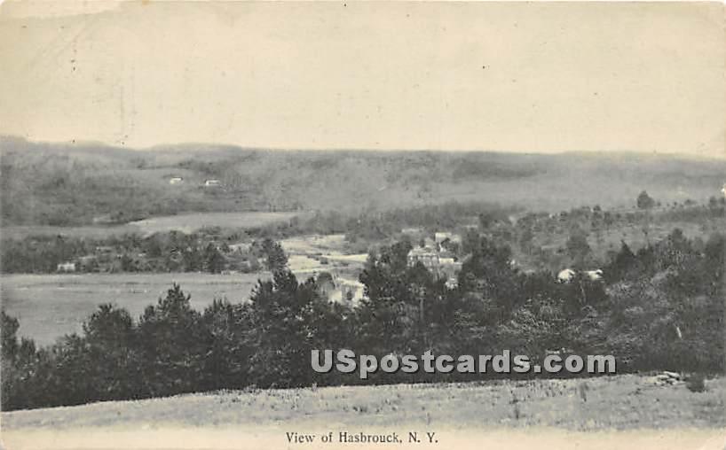 Birds Eye View - Hasbrouck, New York NY Postcard