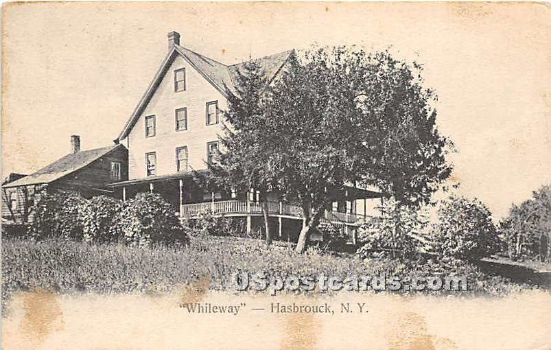 Whileway - Hasbrouck, New York NY Postcard