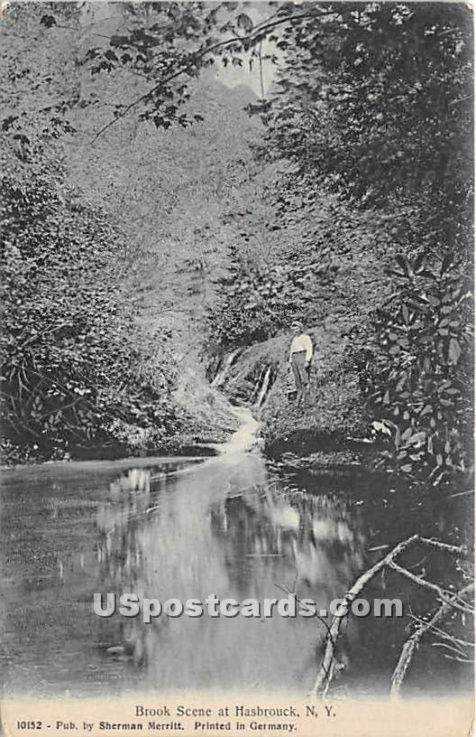 Brook Scene - Hasbrouck, New York NY Postcard