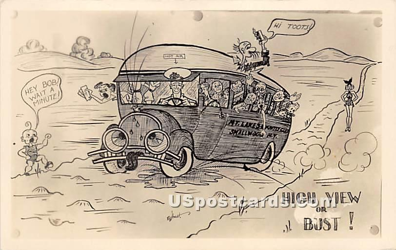 High View or Bust - New York NY Postcard