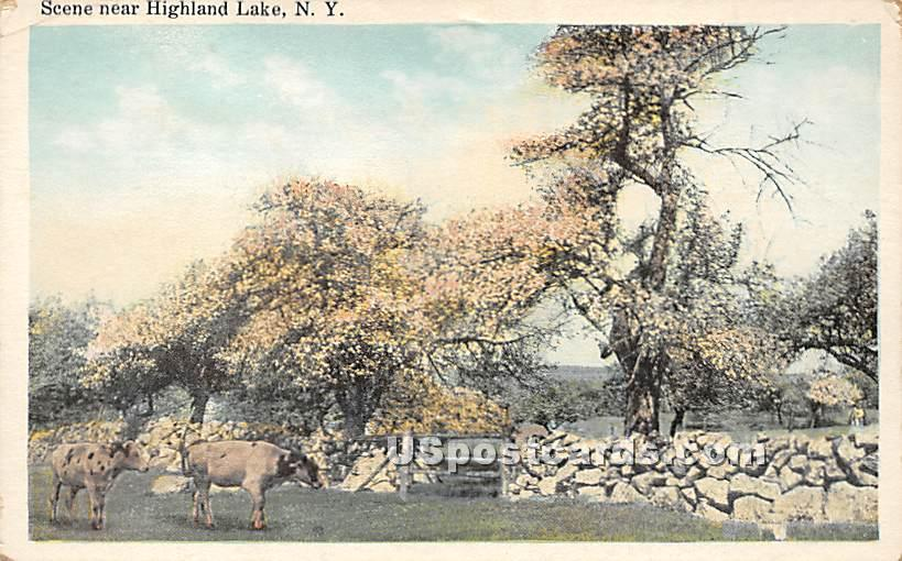 Garden Scene - Highland Lake (Venoge, New York NY Postcard