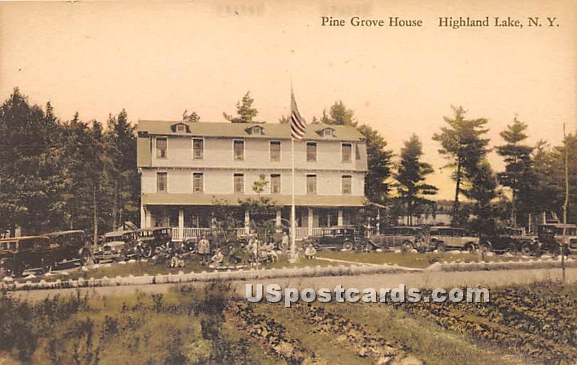 Pine Grove House - Highland Lake (Venoge, New York NY Postcard