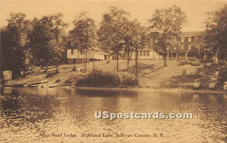 Dear Head Lodge - Highland Lake (Venoge, New York NY Postcard