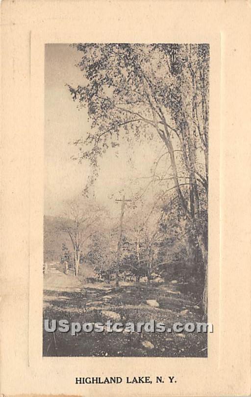 Tree Scene - Highland Lake (Venoge, New York NY Postcard