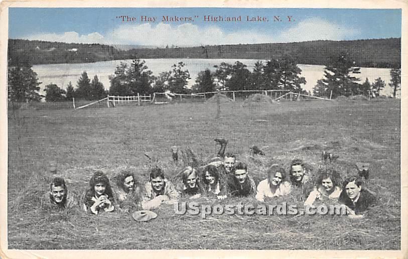 Hay Makers - Highland Lake (Venoge, New York NY Postcard