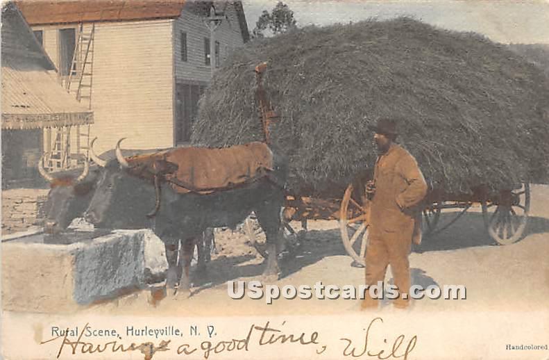 Rural Scene - Hurleyville, New York NY Postcard