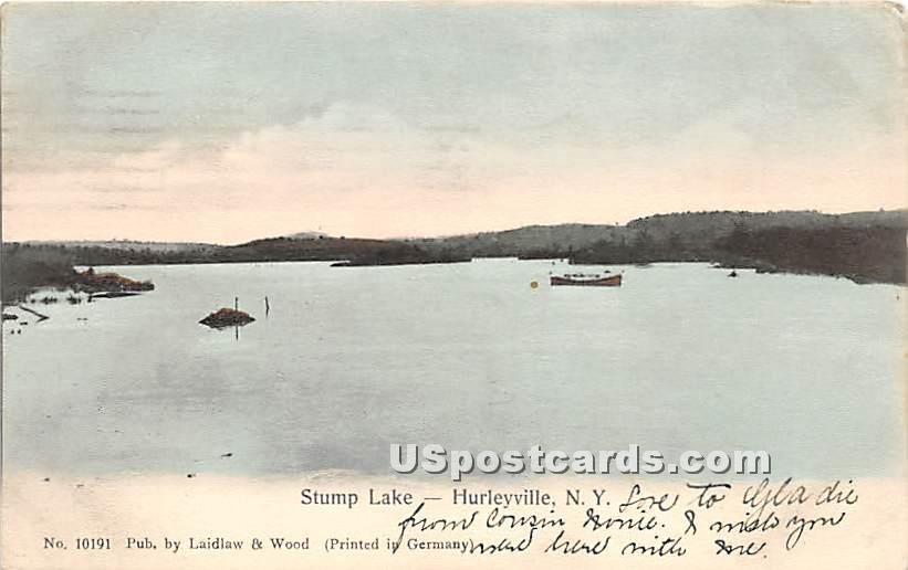 Stump Lake - Hurleyville, New York NY Postcard
