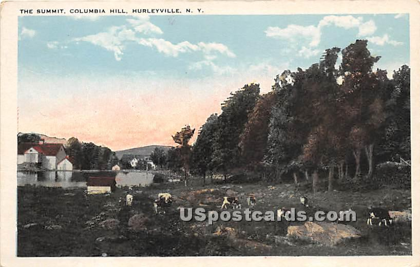 The Summit - Hurleyville, New York NY Postcard