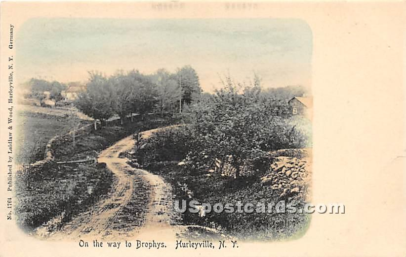 On the way to Brophys - Hurleyville, New York NY Postcard