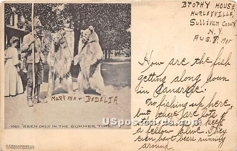Mary Ann & Bedelia - Hurleyville, New York NY Postcard
