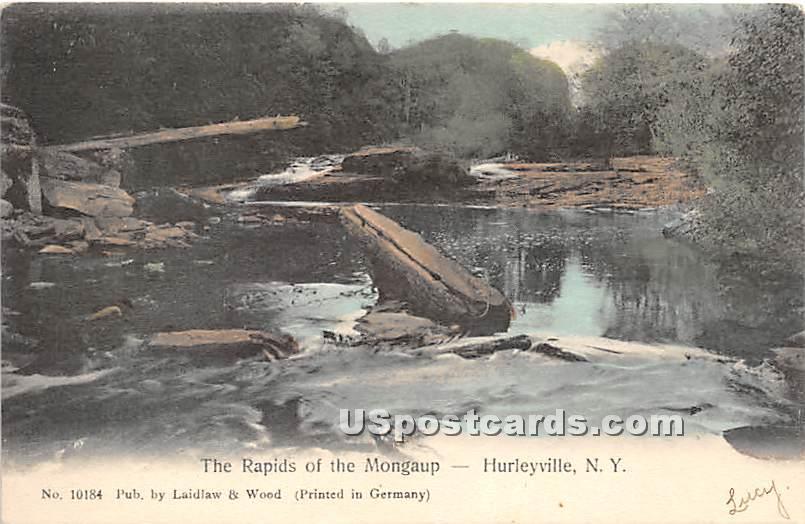 Rapids of the Mongaup - Hurleyville, New York NY Postcard