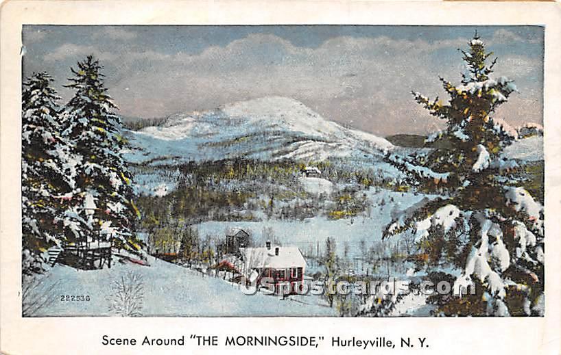 Scene around Morningside Hotel - Hurleyville, New York NY Postcard