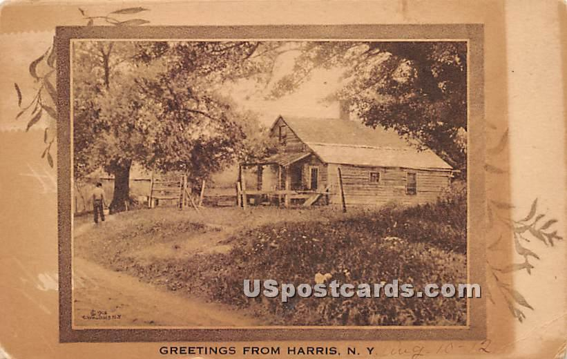Greetings from - Harris, New York NY Postcard