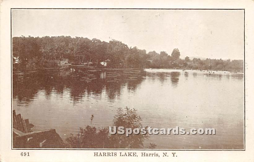 Harris Lake - New York NY Postcard