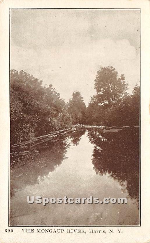The Mongaup River - Harris, New York NY Postcard