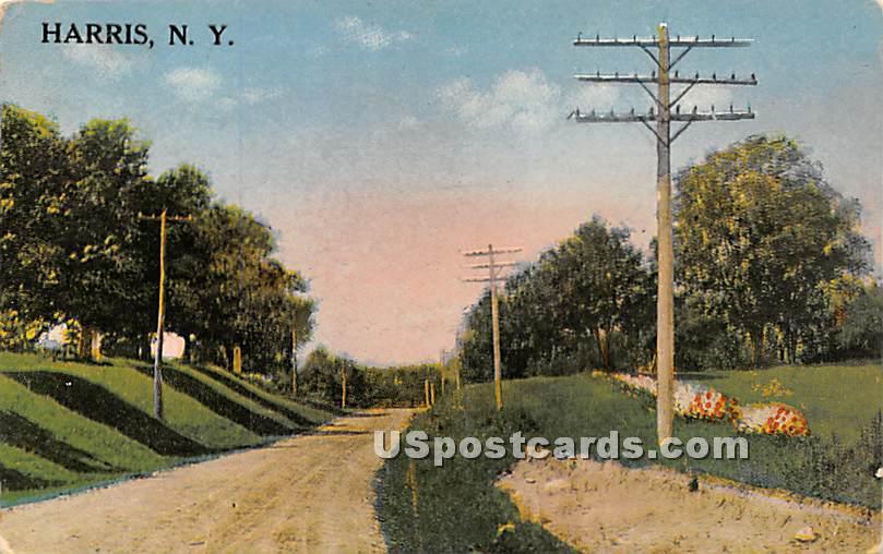 Road Scene - Harris, New York NY Postcard