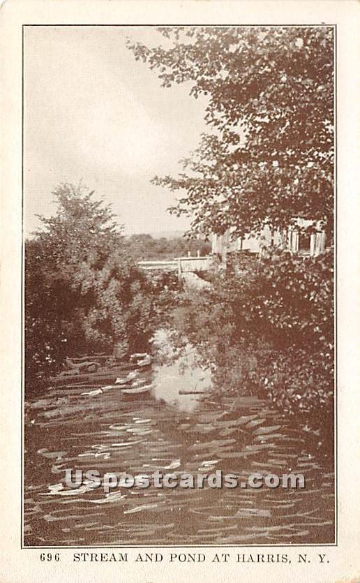 Stream and Pond - Harris, New York NY Postcard