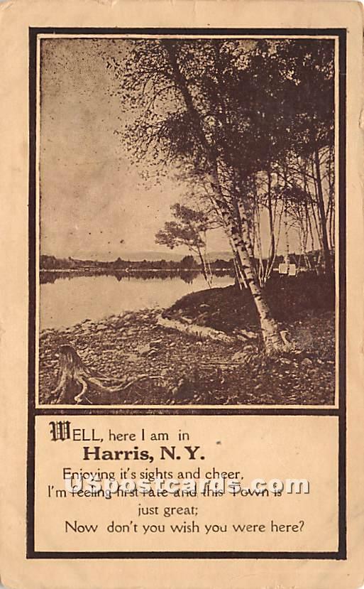 Shore View - Harris, New York NY Postcard