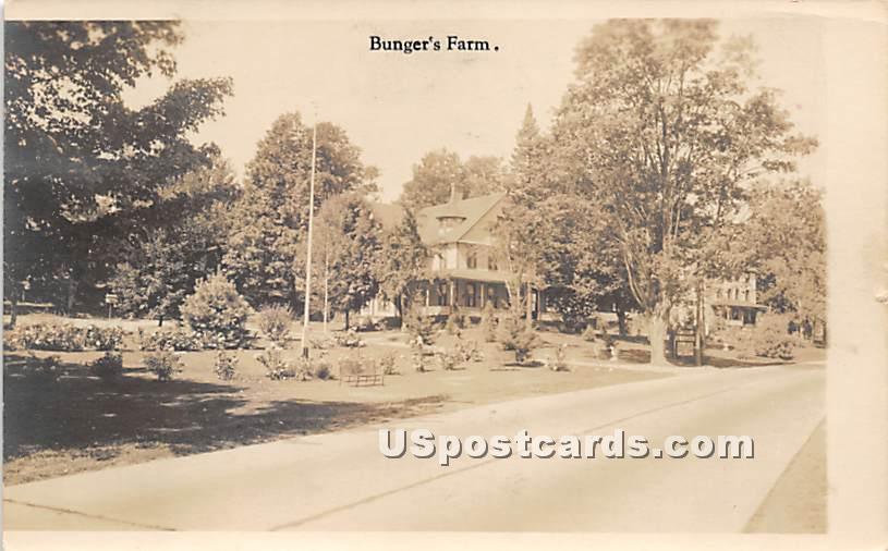 Bunger's Farm - Harris, New York NY Postcard