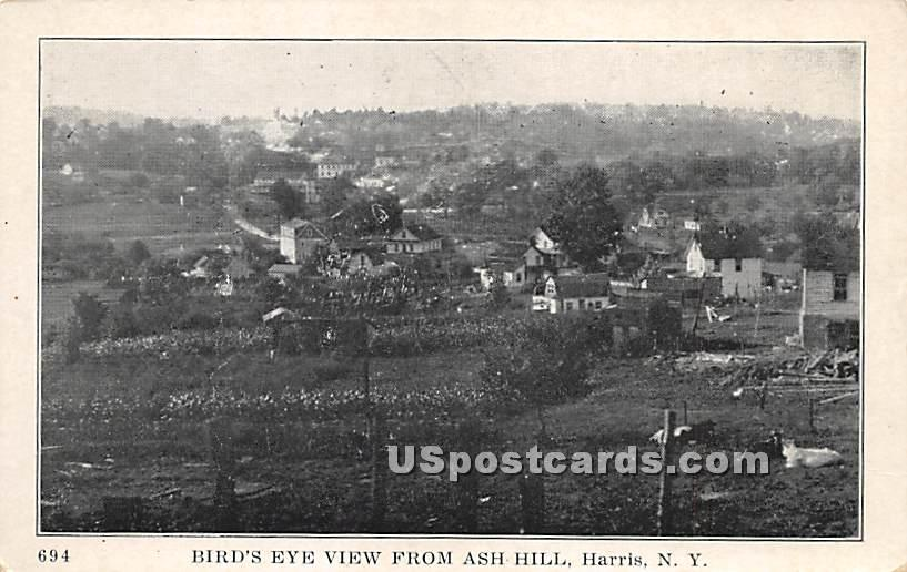 Birds Eye View - Harris, New York NY Postcard