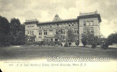 State Veterinary College - Ithaca, New York NY Postcard