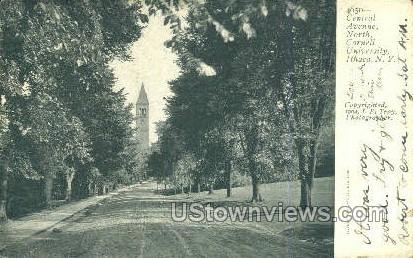 Central Ave, Cornell U - Ithaca, New York NY Postcard