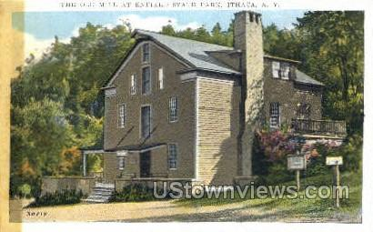 Enfield State Park - Ithaca, New York NY Postcard