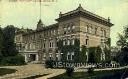 Cornell Veterinary College - Ithaca, New York NY Postcard