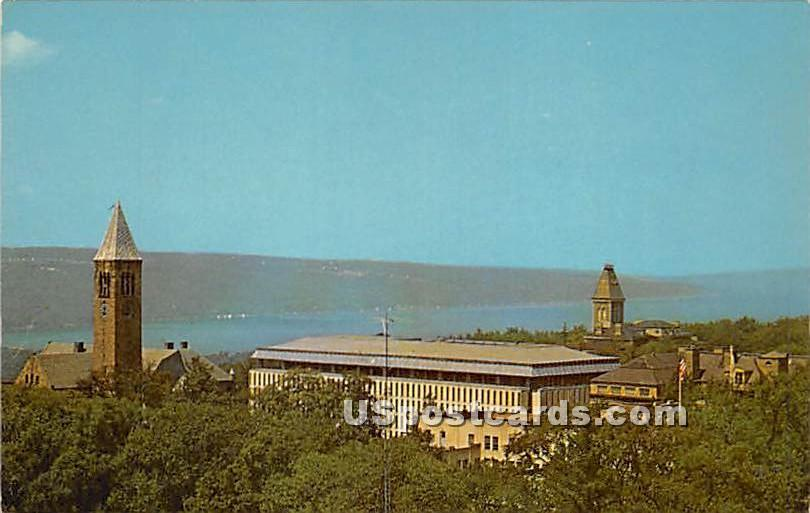 Cornell University, Finger Lake - Ithaca, New York NY Postcard