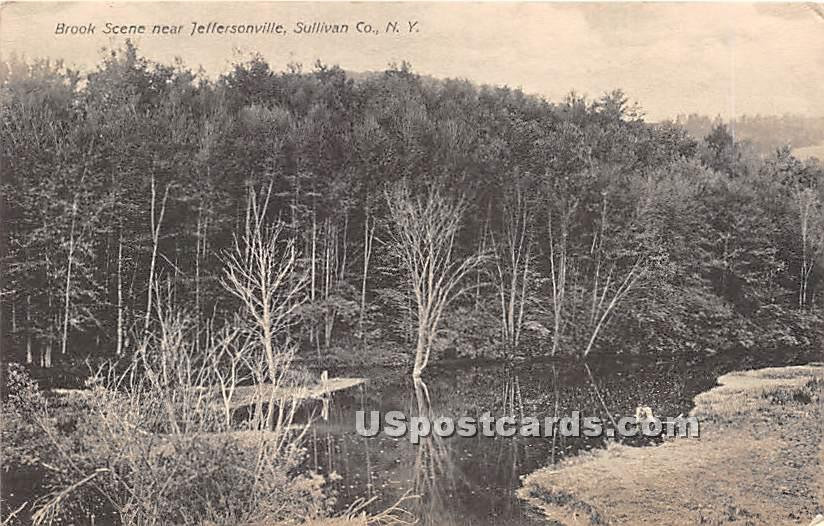 Brook Scene - Jeffersonville, New York NY Postcard