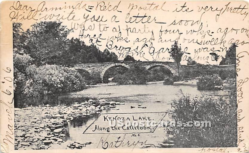 Along the Callicoon - Kenoza Lake, New York NY Postcard